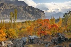Autumn Photo Safari