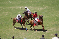 Shandur Polo Festivel